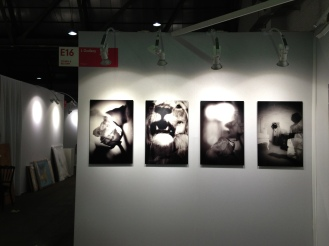 AAF Bruxelles - févr 2014